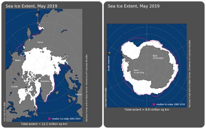 Zasięg lodu morskiego w maju 2019 roku (NOAA)