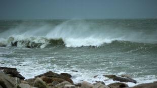 Najpierw silny wiatr, później przymrozki. Ostrzeżenia i prognoza zagrożeń IMGW