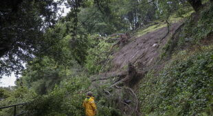 Lawina błotna w Sausalito (PAP/EPA/PETER DASILVA)