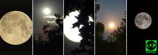 Pełnia Truskawkowego Księżyca. Pokazaliście, jak była piękna